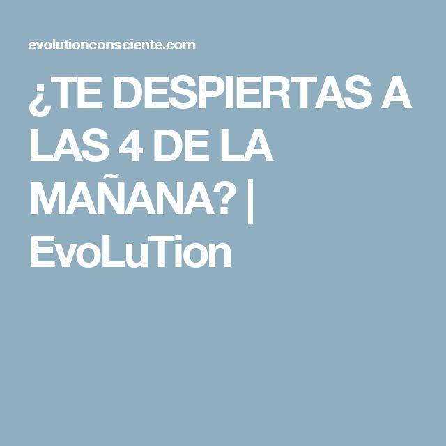 ¿TE DESPIERTAS A LAS 4 DE LA MAÑANA? | EvoLuTion