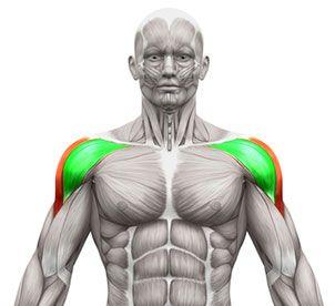 Seitheben mit Kurzhanteln – 90% machen diese Schulterübung falsch
