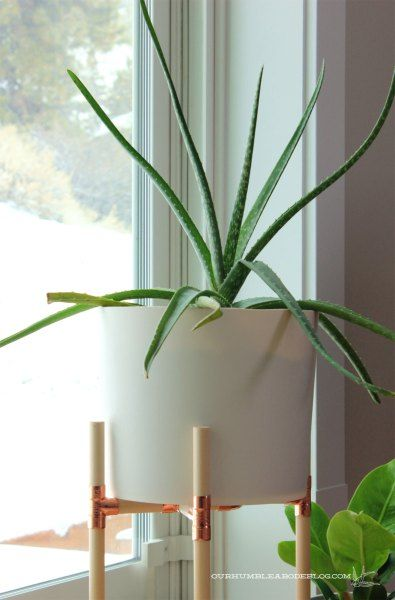 Wooden dowel and copper fitting DIY plant stand.  All the details to make your own.