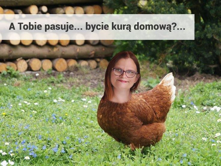 http://mama-m.pl/czy-warto-byc-kura-domowa/