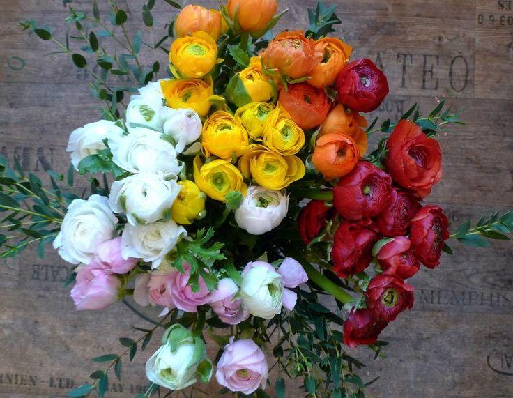 Ranunculus bouquet by ROSMARINO / Pryskyřníky