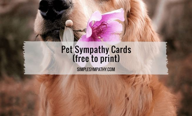 Free printable pet sympathy cards