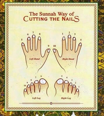 The Sunnah way of cutting the nails. Islam.