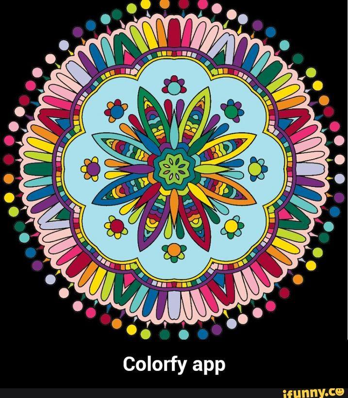 colorfy - Google Search