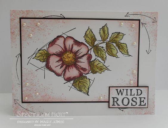 5x7 card made using Sheena - A Little Bit Sketchy – Wild Rose stamp coloured with Spectrum Noir ColourTint - Vintage Rose, Deep Mauve, Leaf Green, Grass Green, Olive, Café Au Lait & Maize. Designed by Marie Jones. #spectrumnoir #crafterscompanion