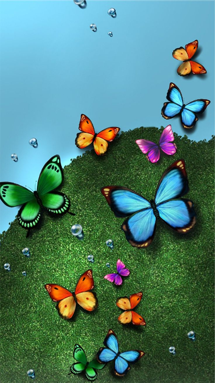 1702 best Butterfly Wallpapers ~Ash\'s♡~ images on Pinterest ...