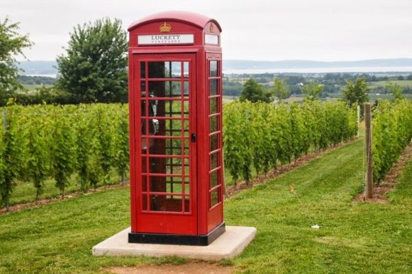 At Luckett Vineyards in Nova Scotia, you can use this phone booth to call anyone in the world. really!