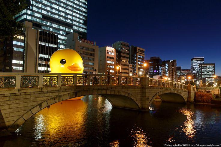 rubber_duck2015_02.jpg (1200×800)