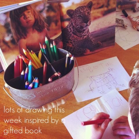 Observational drawings - African animals - An Everyday Story