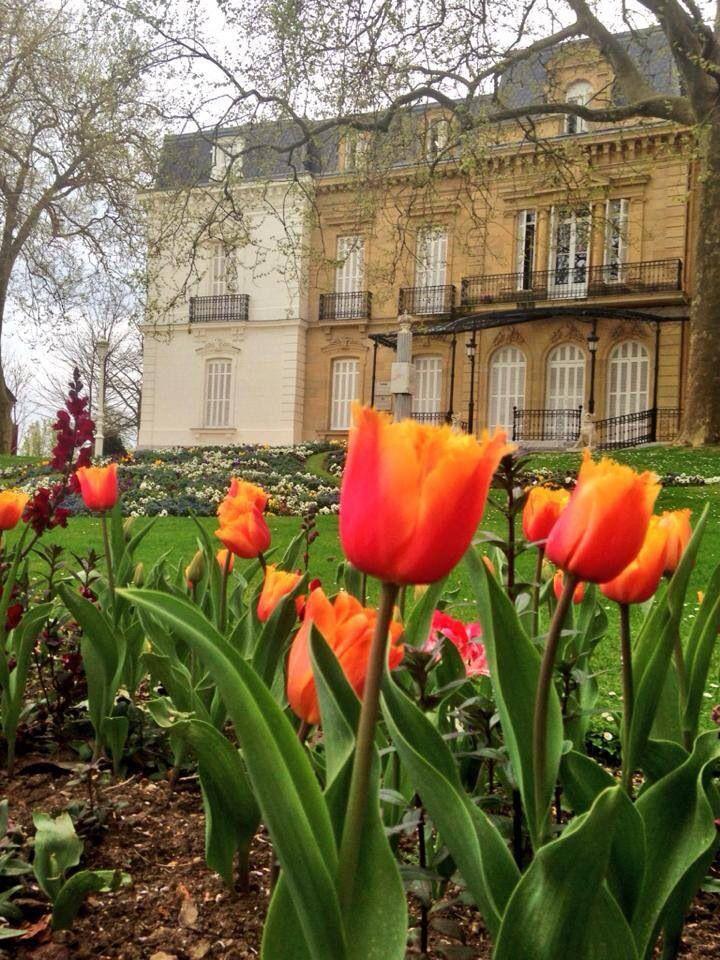Palacio de Ayete.....