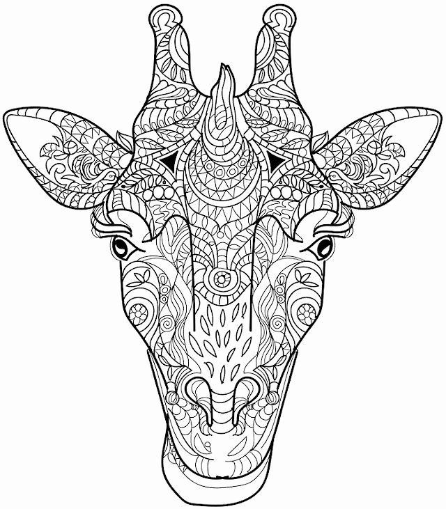Coloring Sheets For Adults Animals Lovely Animal Coloring Pages For Adults Giraffe Head In 2020 Giraffe Coloring Pages Mandala Coloring Pages Animal Coloring Books
