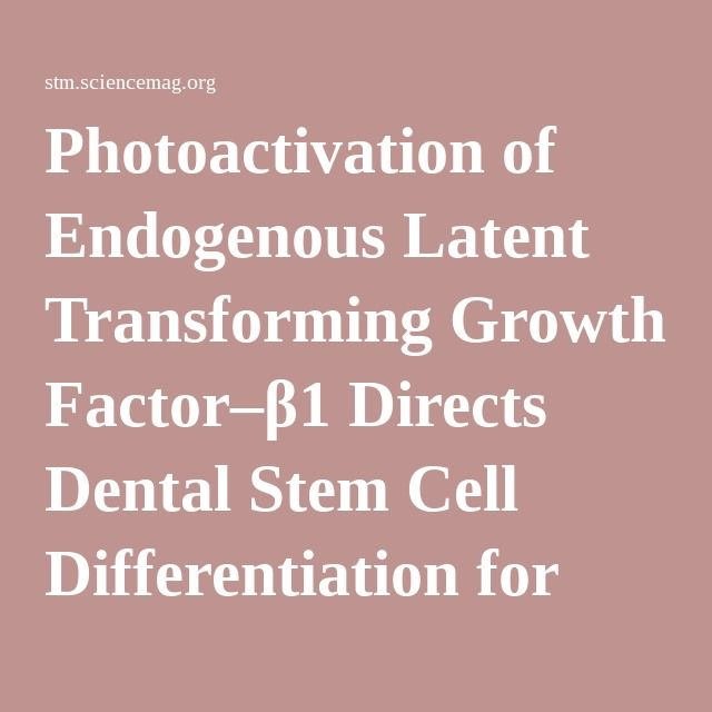 Photoactivation of Endogenous Latent Transforming Growth Factor–β1 Directs Dental Stem Cell Differentiation for Regeneration | Science Translational Medicine