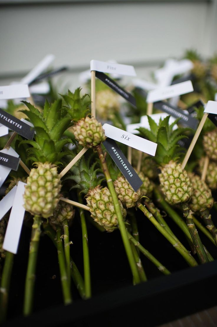 The Tropical Theme Party We're Taking Notes From #refinery29  http://www.refinery29.com/simon-kate-spade-sxsw-dinner#slide-6  How cute are these mini pineapples?