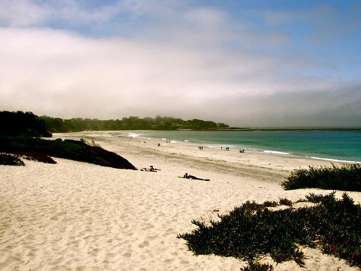 Carmel Ca Dog Friendly Beaches
