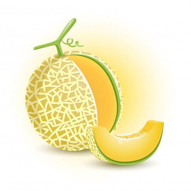 Melon Orange Fresh Fruit Fruits Drawing Fruit Illustration Melon