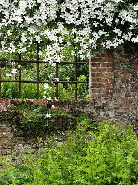 others garden & gardens <3 window in the wall <3 the simplicity