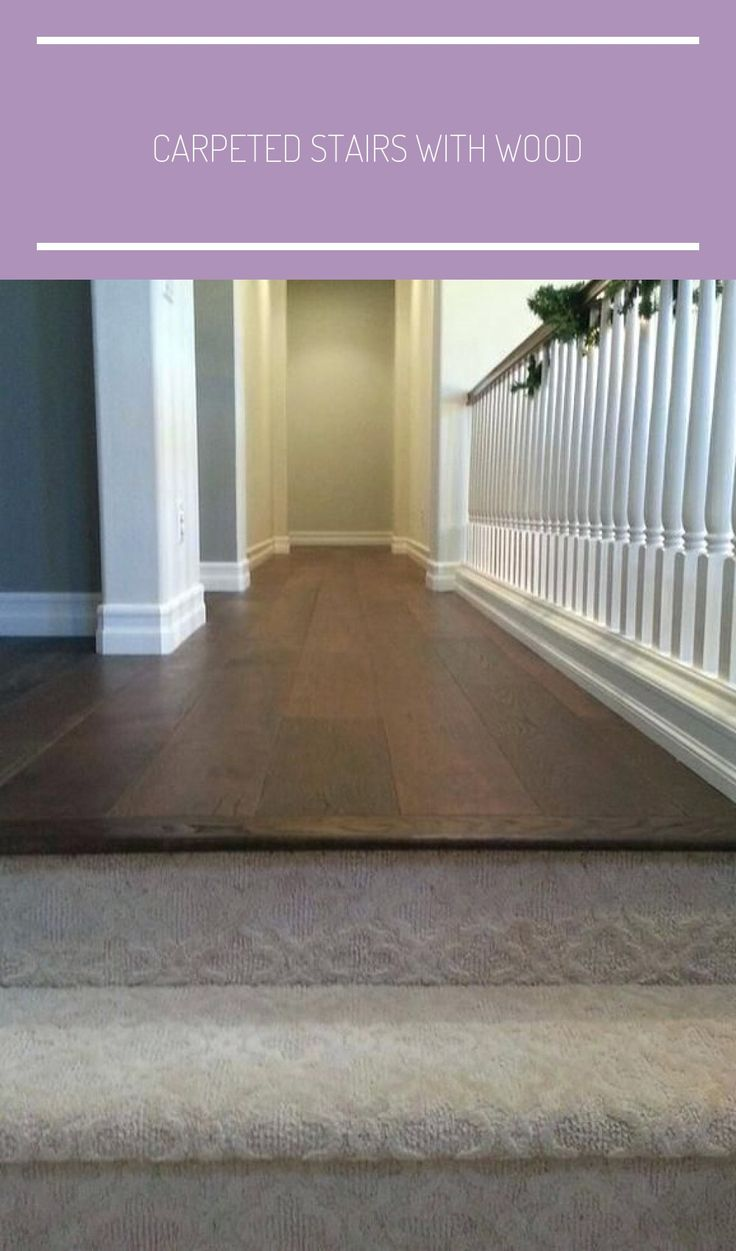 Carpeted Stairs With Wood Floors Best Carpet Ideas On ...