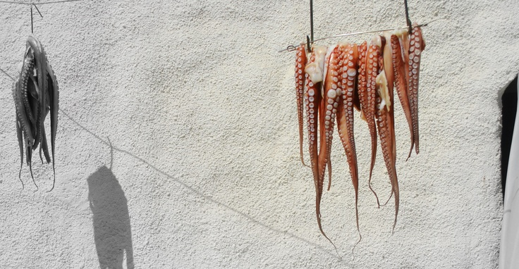 Octopus at the sun, Sifnos