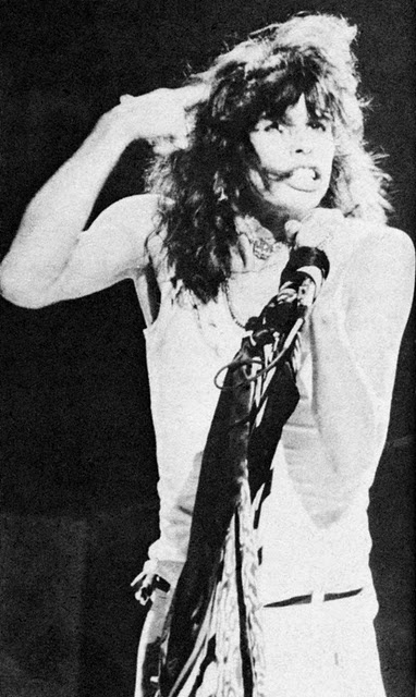I love Aerosmith and their music but Steven Tyler always was my favourite in the band. The way he moved and the way he would screech into the microphone always sent chills up my spine.