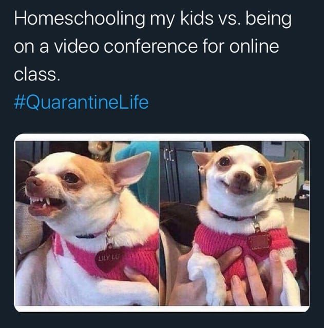 9 Reasons Why Teachers Love Virtual Learning Funny Pictures Daily Funny Funny
