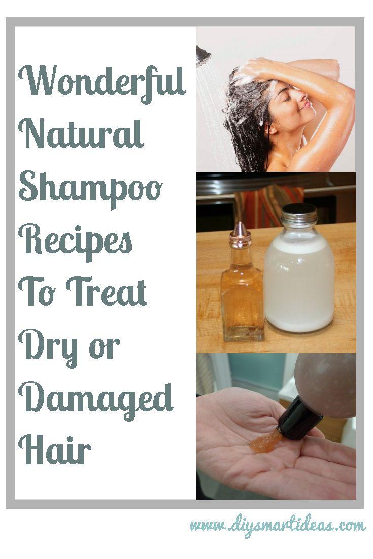 Wonderful Natural Shampoo Recipes To Treat Dry And Damaged Hair Natural Shampoo Recipes Natural Shampoo Homemade Shampoo