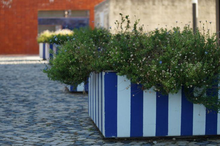 Inspiracje - donice uchwycone we Włoszech. #hydrobox #hydroboxpl #kwiaty #donice #doniczki #inspiracje #wiosna #kwiatydoniczkowe #flowers #spring #ideas #diy #italy #summer #sun #ogrod #greencity