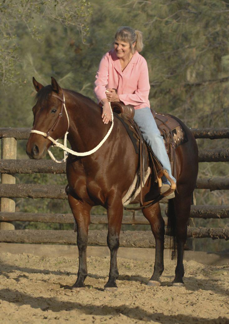 1057 best Horses ) Various Info images on Pinterest Horse - equine veterinary nurse sample resume