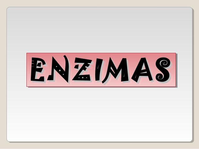 Unidad 2. resumen enzimas