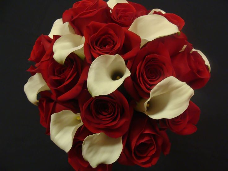 Love the red roses and white calla lilies!!!    Google Image Result for http://3.bp.blogspot.com/-b5WPURylXfQ/TmfLm_QPYvI/AAAAAAAABGw/-80iUqE5hbo/s1600/roses%2Band%2Bcallas.jpg
