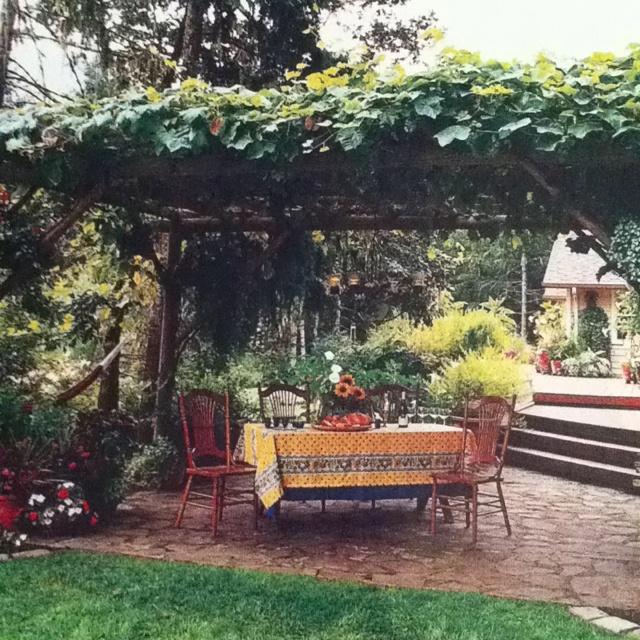 Pergola Designs For Grapes: 89 Best Images About Grape Arbor On Pinterest