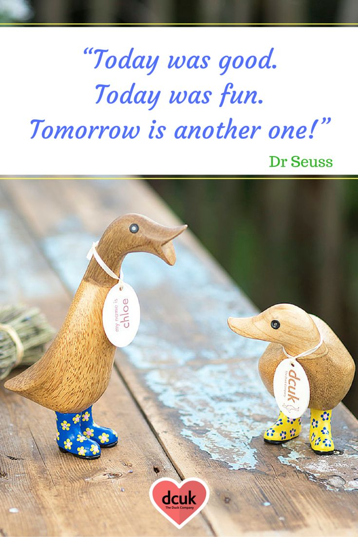 Duck Sayings and Quotes