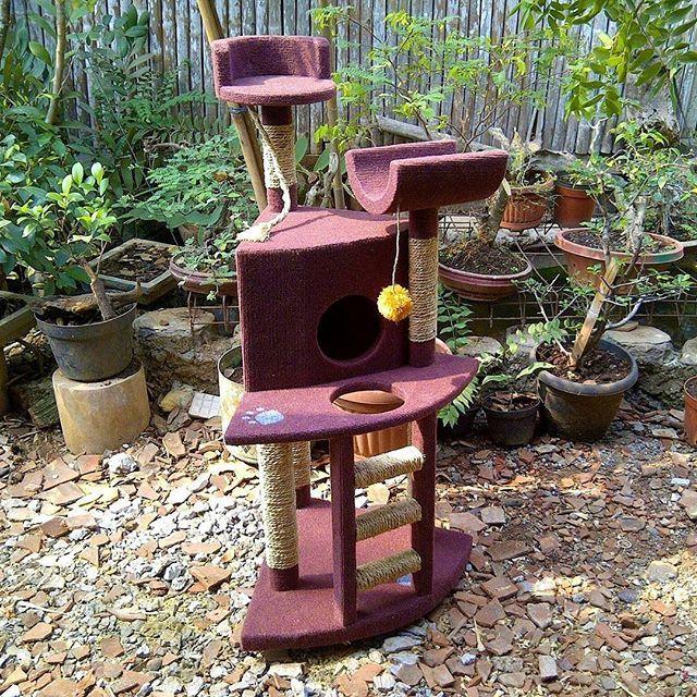 CAT CONDO Mainan kucing cakaran/garukan kucing ( cat scratching/cat tree/cat toy )  Kode JC 32 ukuran tinggi: 115cm lebar:60x55cm Harga Rp.2.650.000  Kami menerima pemesanan CUSTOM ( mengikuti design keinginan anda atau dari design kami )  Hubungi kami :  JL: Aselih Rt:10 Rw:01 Cipedak-Ciganjur Jagakarsa Jakarta-Selatan 12630 No:72 Telp: 087882372643 (Whatsapp)-02194653190 PIN BB 24E4F059, Line: shine_art3  Diproduksi oleh:  Shine art Production  #catshow #cattery #catcabin…