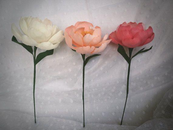 Fiore di carta crespa  Set di 3 corallo fascino peonia