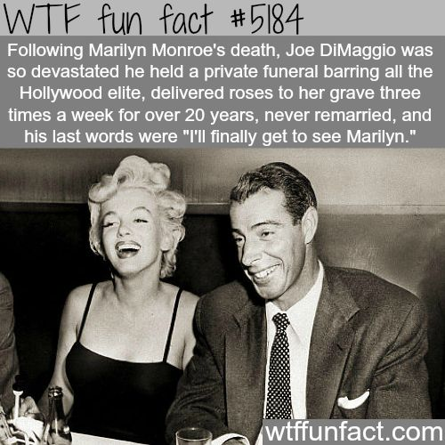 Joe DiMaggio and Marilyn Monroe - WTF fun facts                                                                                                                                                     More