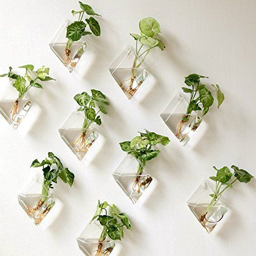 Wall Hanging Glass Planter Indoor Home Decor - Best 25+ Wall Planters Ideas On Pinterest Herb Wall, Vertical
