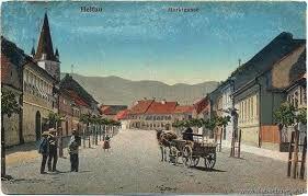 Imagini pentru Von GEORG SCHOENPFLUG VON GAMBSENBERG