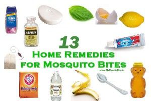 Best Home Remedies For Mosquito Bites