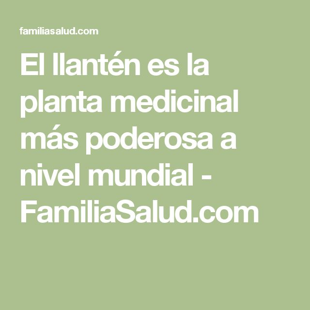 El llantén es la planta medicinal más poderosa a nivel mundial - FamiliaSalud.com