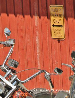Rad oder Fahrer? Parkverbot - mal anders!