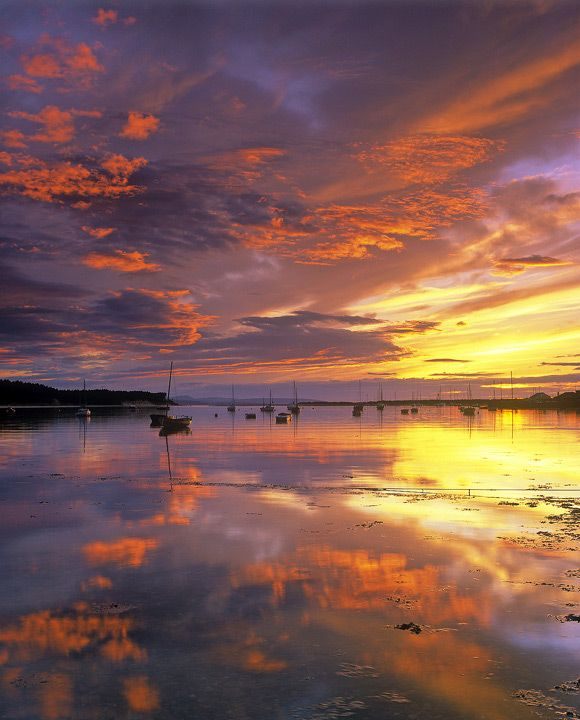 Findhorn, Scotland. One of my favourite places in the world to be.