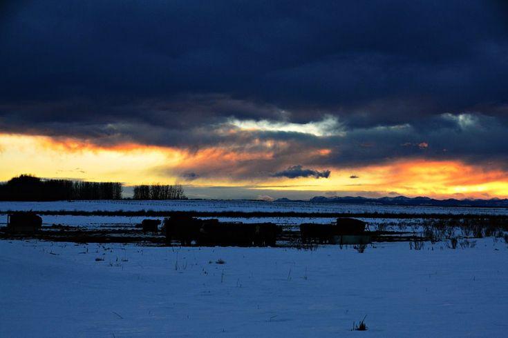 Alberta Rocky Mountain Sunset; David Thompson Country; https://1.bp.blogspot.com/-DolaptfBL64/WnOXj9MXBrI/AAAAAAAAU-Q/xASJChXiQ0wH49CFupg0vlxlcbgGyYn8gCEwYBhgL/s1600/2017-01-21-155037crpL.JPG