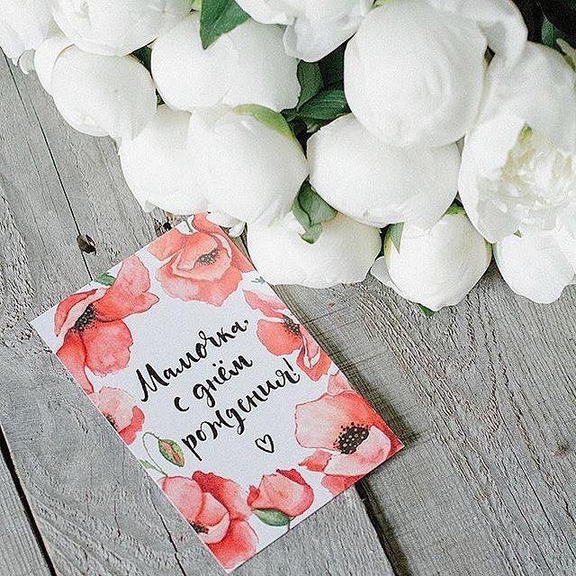 #бумажноедерево_открытки #bumazhnoederevo #пионы #цветы #цветыспб #цветывпитере…