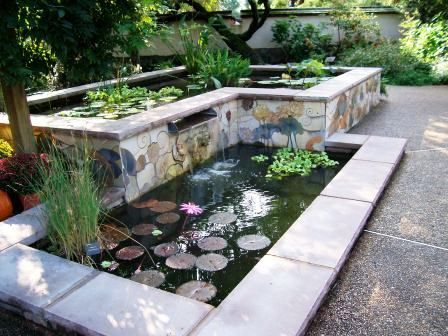 raised pond in the middle of the vegetable garden to regulate temperature