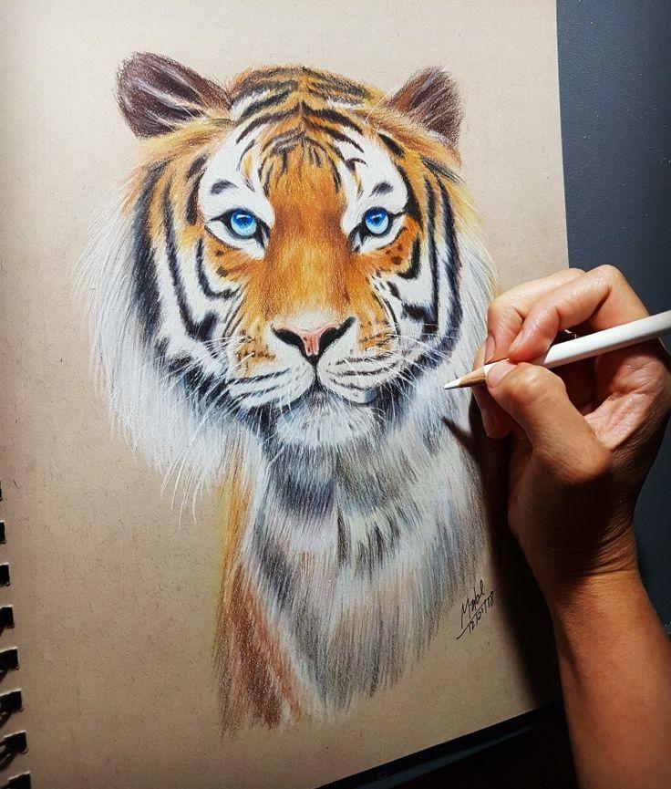 Tigre a color