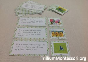 Spring Question Game Vocabulary and Inferencing Skills'