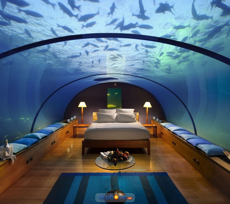 17 best images about hotels on pinterest unique hotels for Hilton hotels in maldives