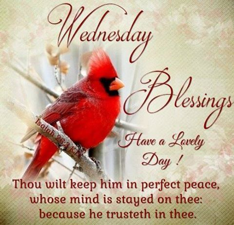Wednesday Blessings. Have a Lovely Day!