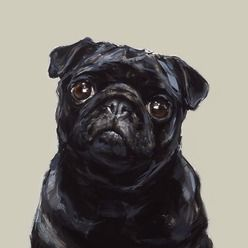 British artist Justine Osborne has a real flair for capturing pups in a fresh and contemporary style. This canvas oil painting of a sweet black pug encapsulates all the individual features we love about this breed. This pug is painted with a charming expression that's guaranteed to bring smiles to pug lovers everywhere. A striking piece that will brighten up any home, Justine's skilfully placed brush strokes and use of colour really bring this painted pup to life. This portrait makes a…