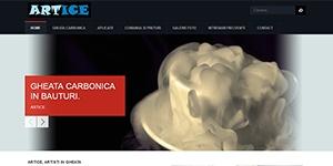 Artice gheata carbonica - www.artice.ro