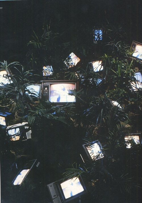 Tv Garden (1974). Single channel video installation with live plants and monitors, color, sound, dimensions variable.